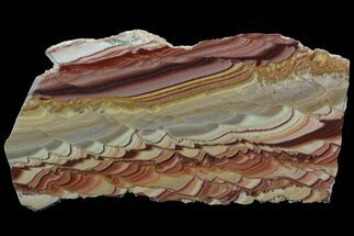 "7.3"" Polished Slab Of Rolling Hills Dolomite - Mexico For Sale, #92726"