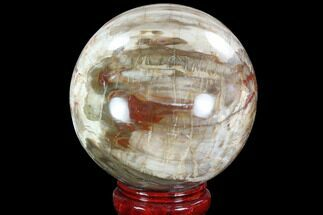 "5.6"" Colorful Petrified Wood Sphere - Madagascar For Sale, #92999"