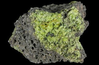 "Buy 3.9"" Peridot in Basalt - Arizona - #93949"