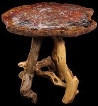 "Buy 26.5"" Arizona Rainbow Petrified Wood Table With Wood Base - #94516"