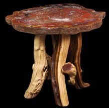 "28.5"" Arizona Rainbow Petrified Wood Table With Wood Base For Sale, #94517"