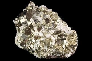 Pyrite & Quartz - Fossils For Sale - #94389