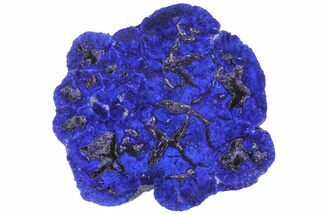 "1.52"" Vivid Blue, Cut/Polished Azurite Nodule - Siberia For Sale, #94568"
