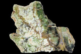 Common Opal - Fossils For Sale - #95226