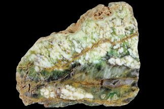 "Buy 6.4"" Polished Green-White Opal Slab - Western Australia - #95227"
