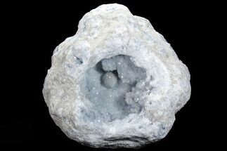 "Buy 13.8"" Blue Celestite Crystal Geode (67 lbs) - #74680"