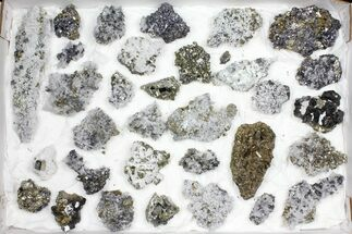 Pyrite, Galena, Quartz, Sphalerite, Calcite & More - Fossils For Sale - #97056