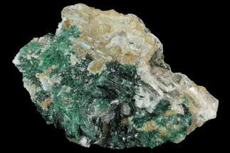 "Buy 1.85"" Atacamite, Quartz & Selenite Association - Peru - #98146"