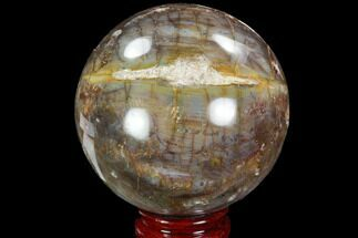 "Buy 3.5"" Petrified Wood Sphere - Madagascar - #98464"