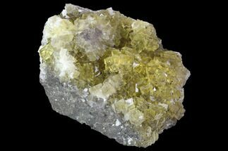 "Buy 2.7"" Yellow, Cubic Fluorite Crystal Cluster - Spain - #98689"