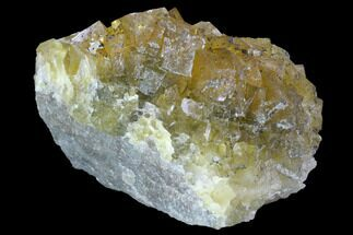 Fluorite - Fossils For Sale - #98697