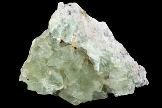 Fluorite & Quartz - Fossils For Sale - #98988