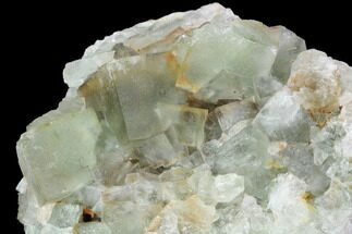 Fluorite & Quartz - Fossils For Sale - #99000
