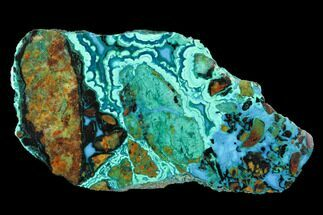 "2.8"" Polished Chrysocolla & Plume Malachite - Bagdad Mine, Arizona For Sale, #98915"