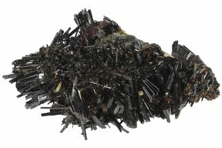 2.7 Black Tourmaline (Schorl) Crystal Cluster - Namibia For Sale, #100376