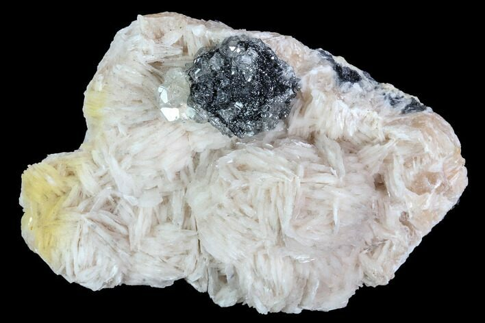 "2.4"" Cerussite Crystals with Bladed Barite on Galena - Morocco"