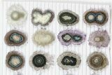 "Wholesale: ~1"" Amethyst Stalactite Slices (24 Pieces) - #101758-1"