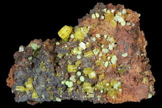 "Buy 2"" Wulfenite & Green Botryoidal Mimetite Association - Mexico - #103516"