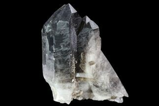 Quartz var. Smoky - Fossils For Sale - #104082