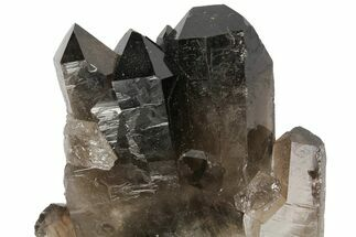 "4.2"" Dark Smoky Quartz Crystal Cluster - Brazil For Sale, #104087"