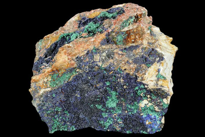 "6.8"" Large Malachite with Azurite Specimen (6.7 Lbs) - Morocco"