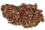 "3.2"" Large, Ruby Red Vanadinite Crystal Aggregation - Morocco - #104759-1"