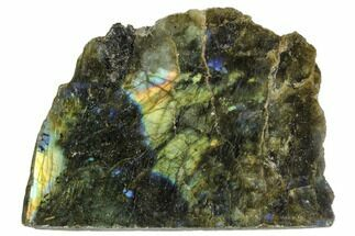 "Buy 3.6"" Wide, Single Side Polished Labradorite - Madagascar - #104830"