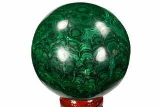 "Gorgeous 2.5"" Polished Malachite Sphere - Congo For Sale, #106262"
