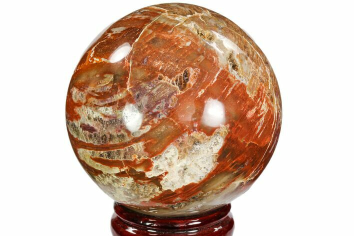 "3.55"" Colorful Petrified Wood Sphere - Madagascar"