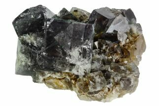 "Buy 1.8"" Fluorite Crystal Cluster -  Rogerley Mine - #106123"