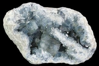 "11"" Celestine (Celestite) Geode (20.7 Lbs) - Large Crystals! For Sale, #106691"