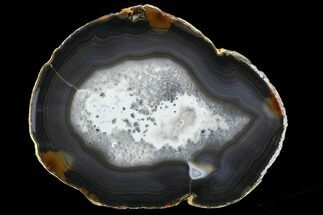 "Buy 5.8"" Polished Brazilian Agate Slice - #107371"