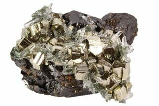 "Buy 2.1"" Pyrite, Sphalerite and Quartz Association - Peru - #107434"