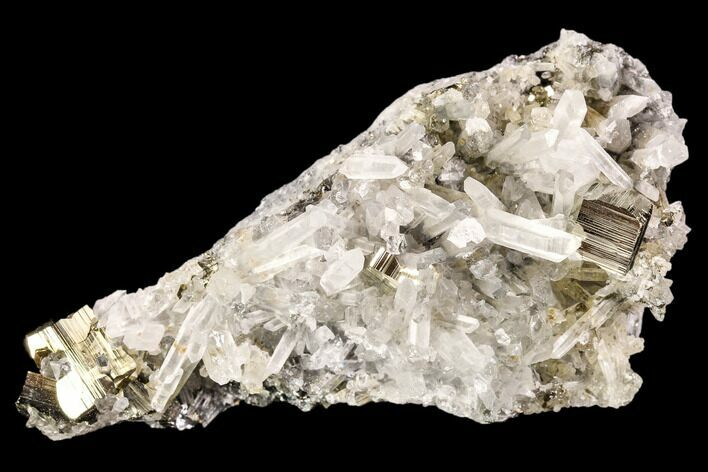 "3"" Gleaming Pyrite & Quartz Crystal Association - Peru"