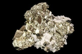 "Buy 2.7"" Gleaming, Cubic Pyrite & Quartz Association - Peru - #107425"