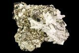 "2.7"" Gleaming, Cubic Pyrite & Quartz Association - Peru - #107425-1"
