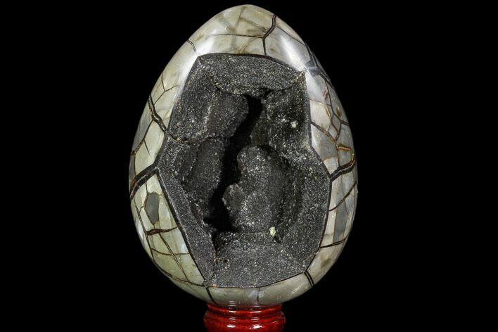"7.6"" Septarian ""Dragon Egg"" Geode - Black Crystals"