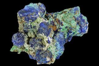 "2"" Malachite, Azurite and Selenite Crystal Association - Utah For Sale, #109835"