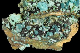Rosasite, Aurichalcite & Malachite - Fossils For Sale - #109812