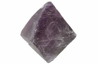 Fluorite - Fossils For Sale - #110049