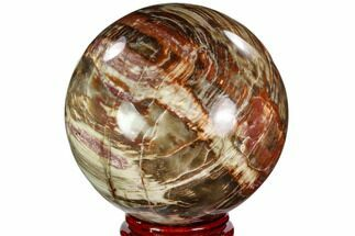 "Buy 5.7"" Colorful Petrified Wood Sphere - Madagascar - #110590"