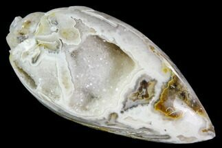 "1.4"" Chalcedony Replaced Gastropod With Druzy Quartz - India For Sale, #111149"