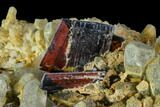 "2.4"" Brookite and Chlorite Quartz - Pakistan - #111335-3"