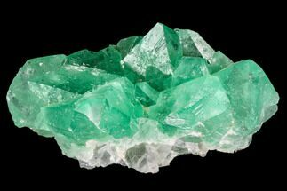 "Buy 2.7"" Green Fluorite Crystal Cluster - South Africa - #111571"