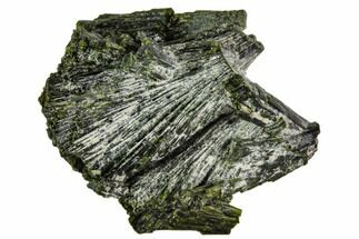 Epidote - Fossils For Sale - #111984