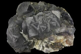 Fluorite  - Fossils For Sale - #112098