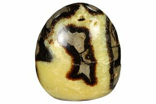 "3.8"" Polished Septarian Free Form Sculpure  - Madagascar For Sale, #113096"