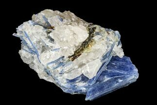 "3.6"" Vibrant Blue Kyanite Crystal Cluster - Brazil For Sale, #113483"