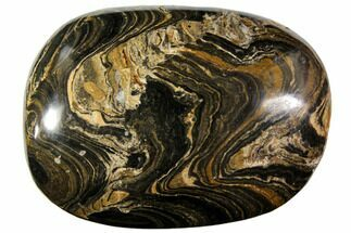 "Buy 2.55"" Polished Stromatolite (Greysonia) Pebble - Bolivia - #113506"