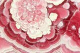 "4.5"" Rhodochrosite Stalactite Section - Gorgeous - #114246-1"